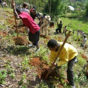 Sadzenie drzewek ucniowie CSFX (6)