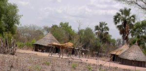04. Domy mieszkalne wioski